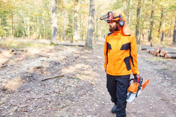 Uspešno podiranje dreves in zaščitna oprema